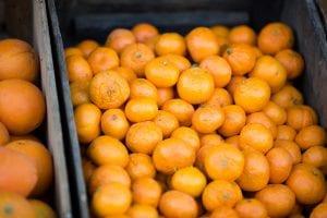 Frutas para el metabolismo