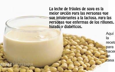 leche de frijoles de soja