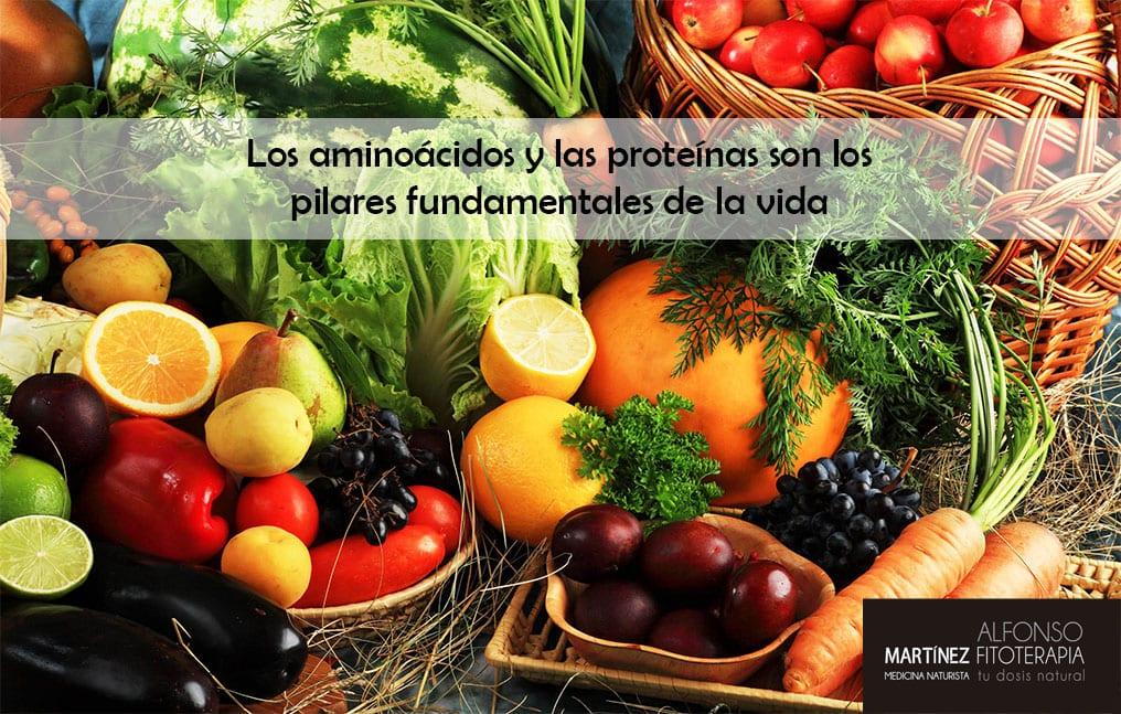 aminoácidos-alimentos