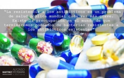 alta calidad sobre la efectividad de los programas hospitalarios para reducir la cantidad de indicaciones de antibióticos