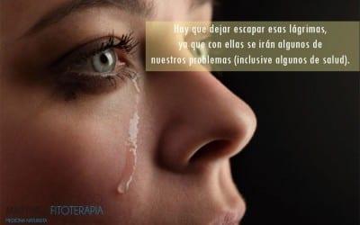 los beneficios de llorar