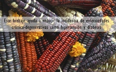 maíz azul y frijol negro