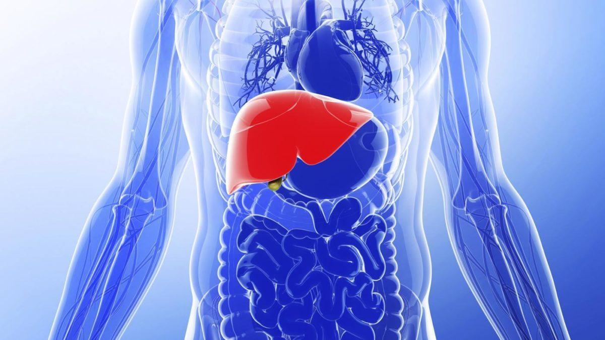 La importancia de desintoxicar el hígado