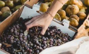 Frutas para la diabetes