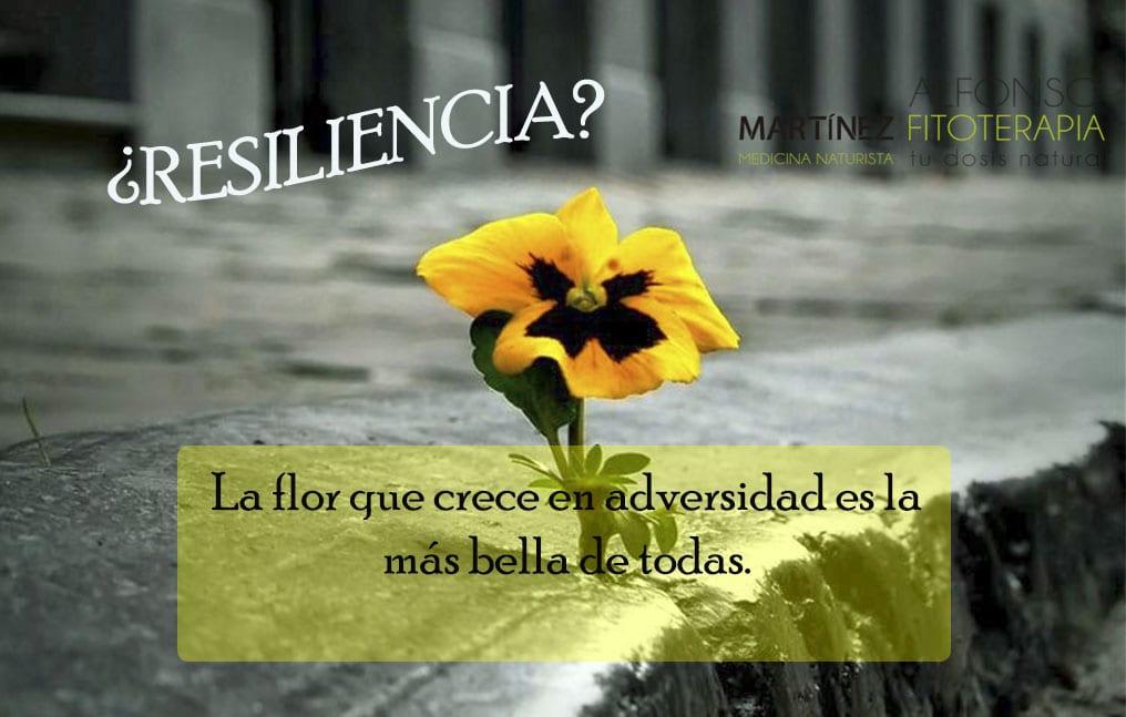 ¿Cómo desarrollar resiliencia?