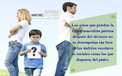 Padres que se divorcian de los hijos