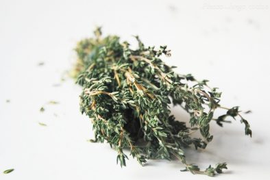 Usos de la planta medicinal tomillo