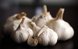 Plantas medicinales para hipertensión arterial