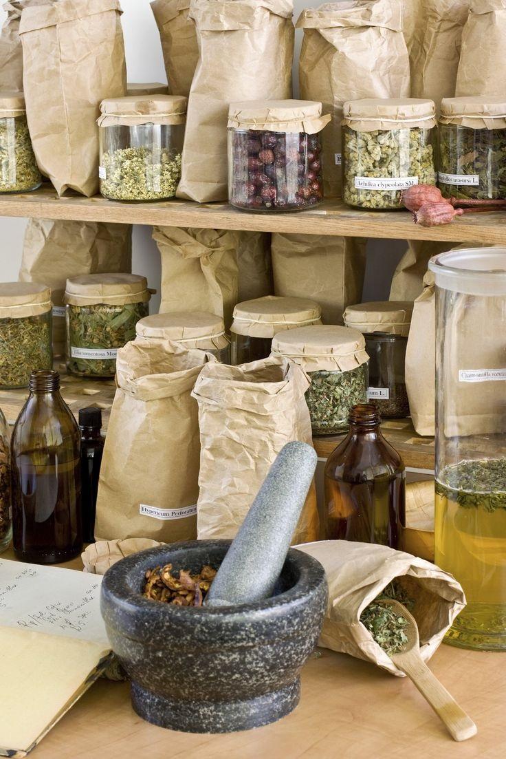 Las drogas vegetales y su conocimiento como ciencia