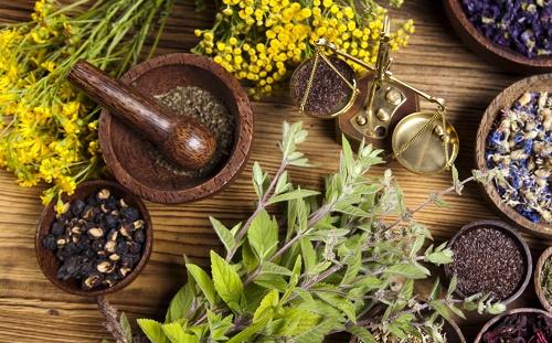 las plantas medicinales y el mortero con pistilo