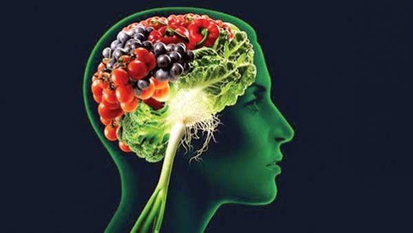 Alimentos para el cerebro.