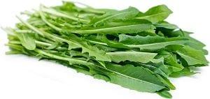 Beneficios de la Lechuga Silvestrre para nuestra salud
