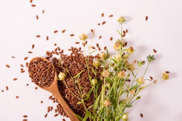 La linaza como planta medicinal